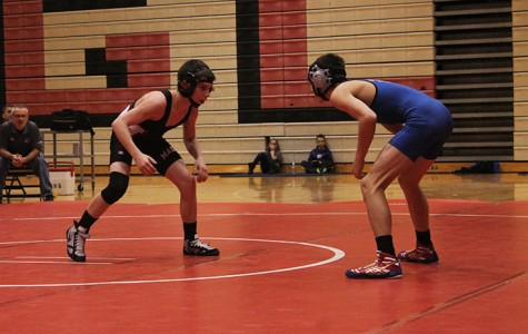 Nine wrestlers qualify for state