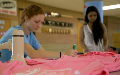 Student Council to hold 2nd Annual Eaglepalooza