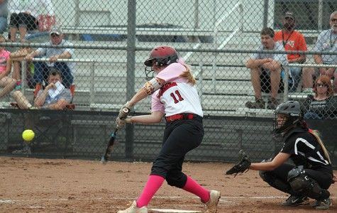 Softball defeats Newton, wins league