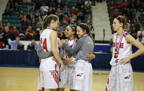 Eagles fall in state title game
