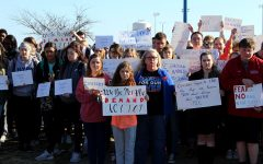 Students participate in national high school walkout
