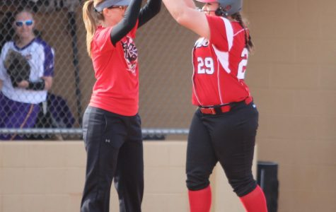 Softball splits double header, loses pitcher to injury