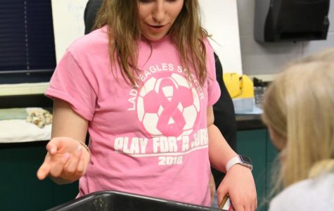 Students help care for baby quails