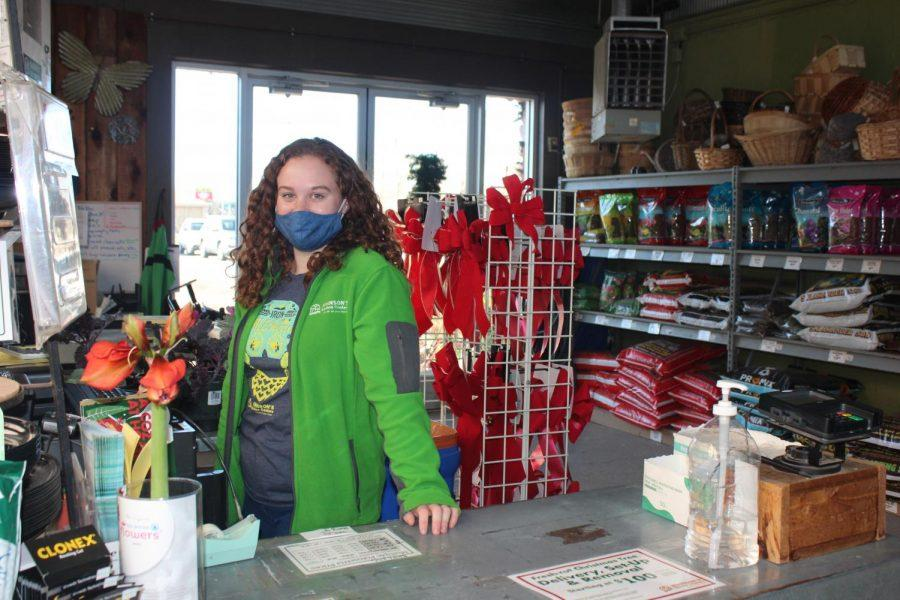 Clara Keller (11) stands at the cash register in the green house at Johnson's Garden Center.  Keller got a job there at the beginning of the school year and enjoys working while in Hybrid or Full Virtual for learning.
