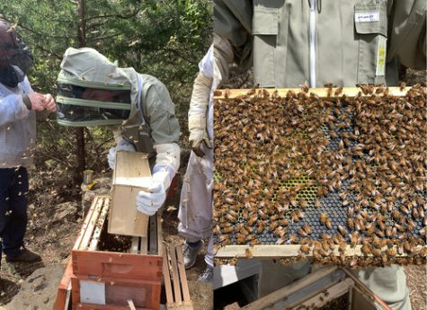 Lincoln DeBok works with his first beehive funded by the enrichment grant he was given.